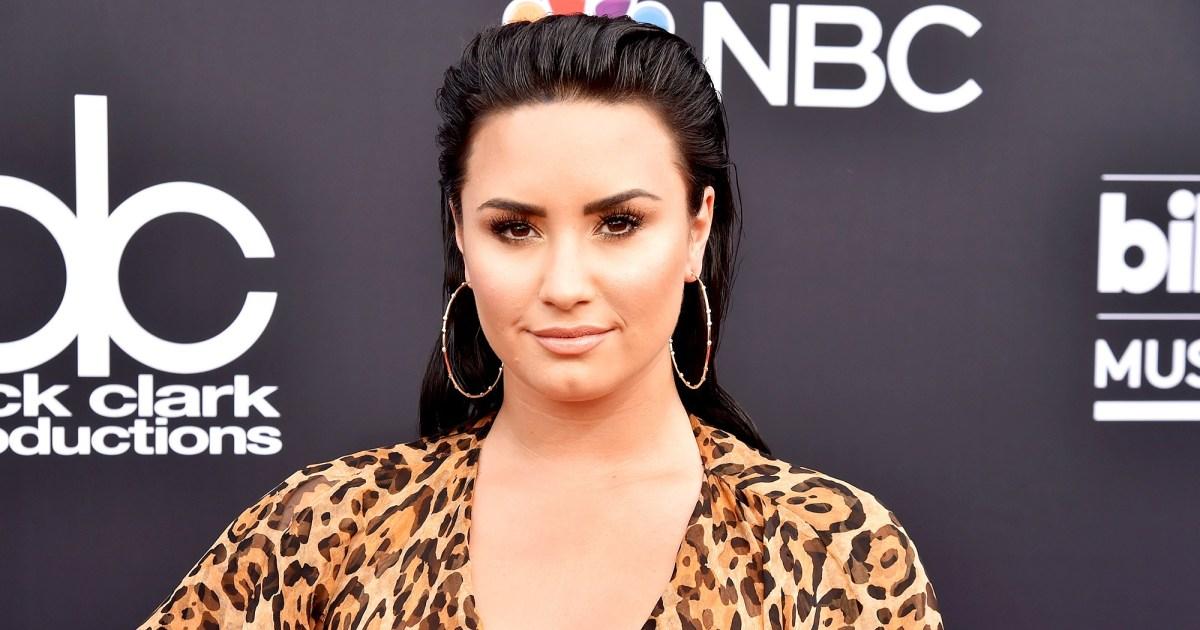 Demi Lovato Responds to Fat-Shamer: I 'Am Choosing Not to Diet'